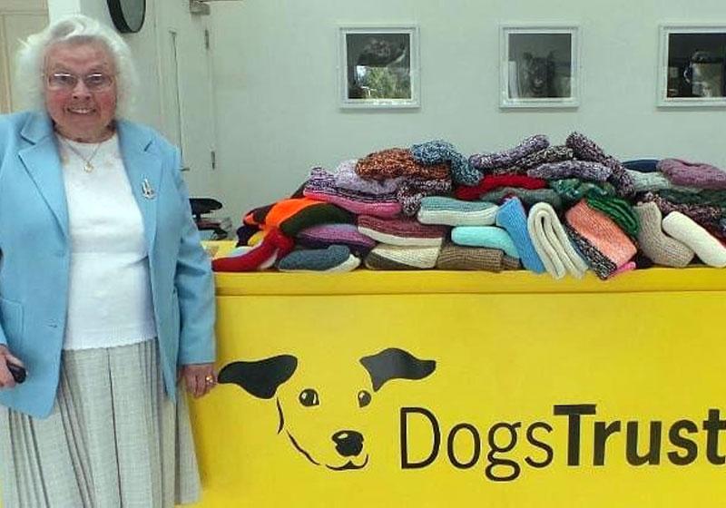 Idosa de 89 já tricotou 450 casacos para cães abandonados