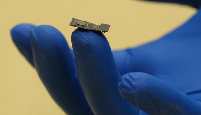 Chip colocado no cérebro lê e ativa neurônios poderá reverter cegueira e surdez